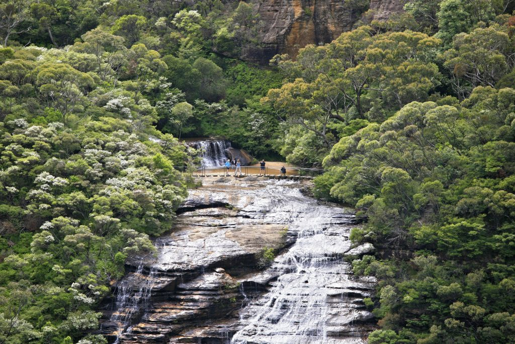 Wentworth Falls, Blue Mountians National Park