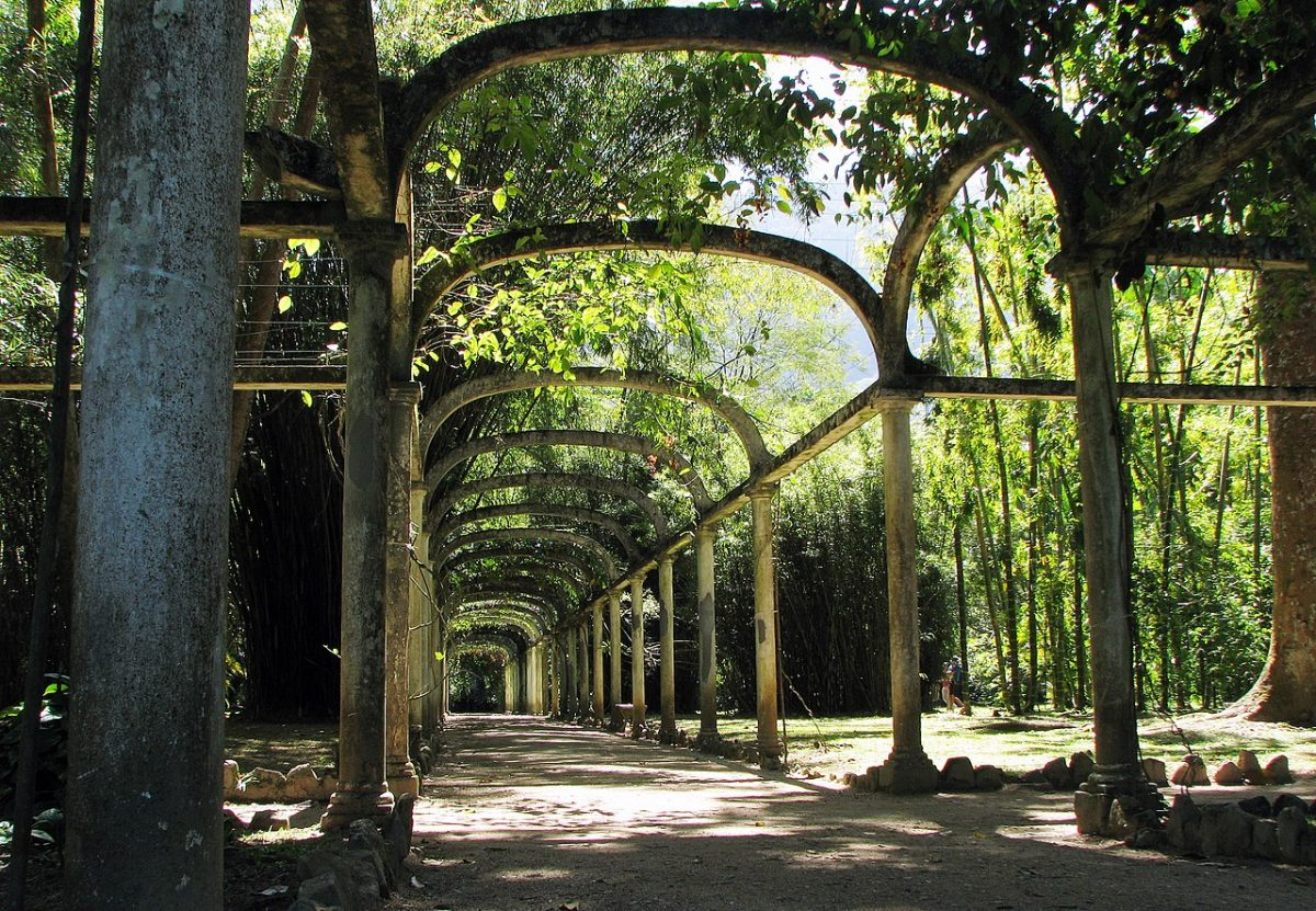 Rio de Janeiro's Botanical Garden gathers over 6,500 species of Brazilian and foreign flora covering over an area of 54 hectares.