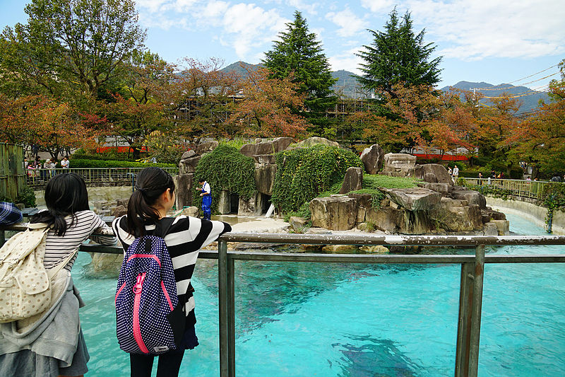 Kobe Oji Zoo by 663highland for WikiCommons - 15 Things To Do In Kobe, Japan