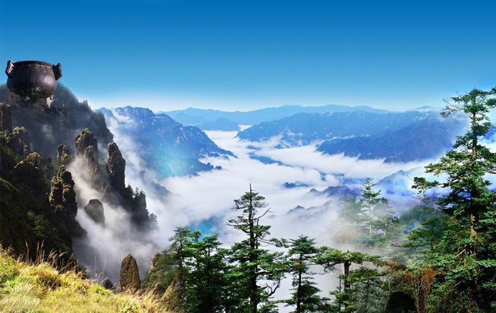 tree, mountain, hubei