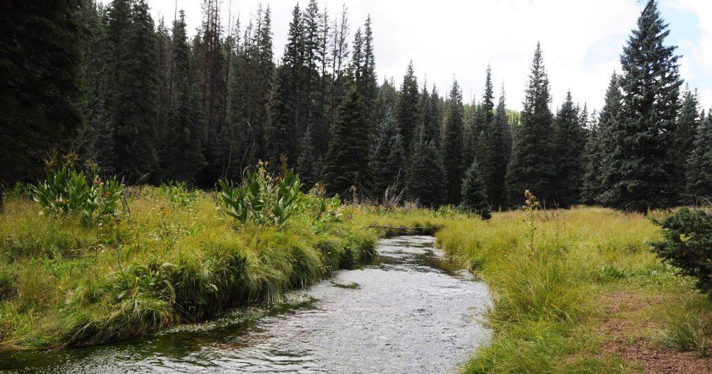 west baldy trail, eagar