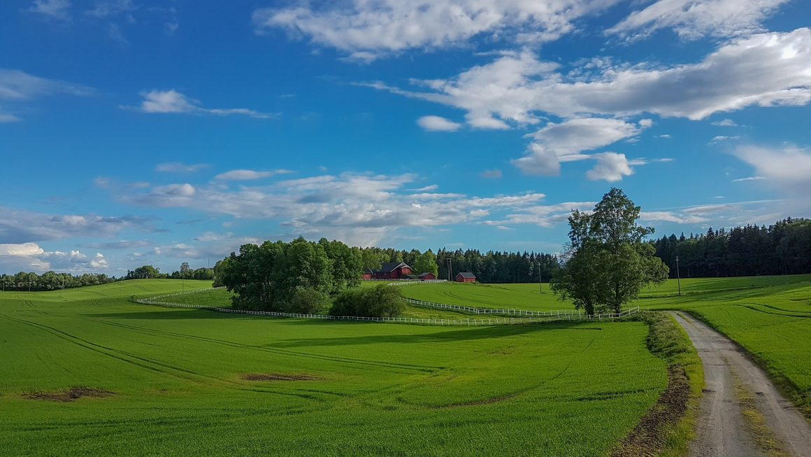 fields Akershus Norway 1160x653 - Best Things To Do In Akershus, Norway