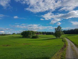 fields Akershus Norway 300x225 - Best Things To Do In Akershus, Norway