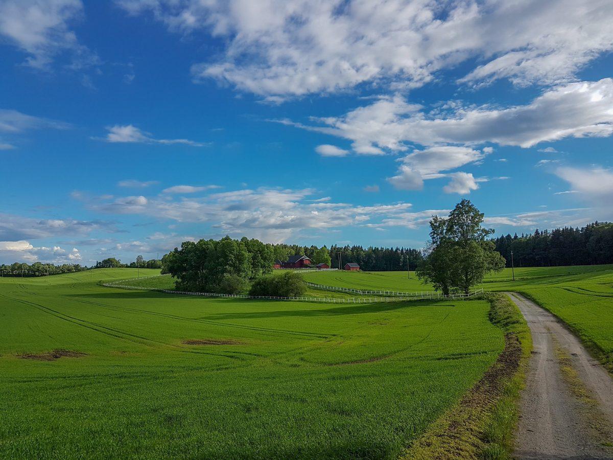 fields Akershus Norway - Best Things To Do In Akershus, Norway