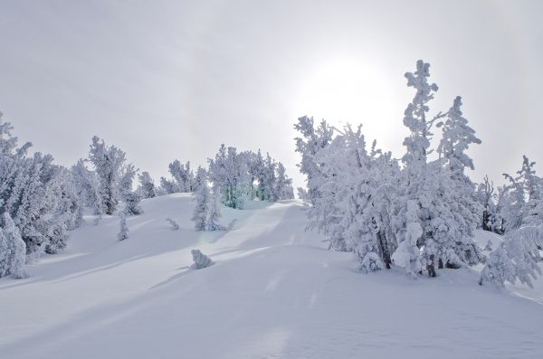 10 Best Lake Tahoe Ski Resorts You Need This Winter
