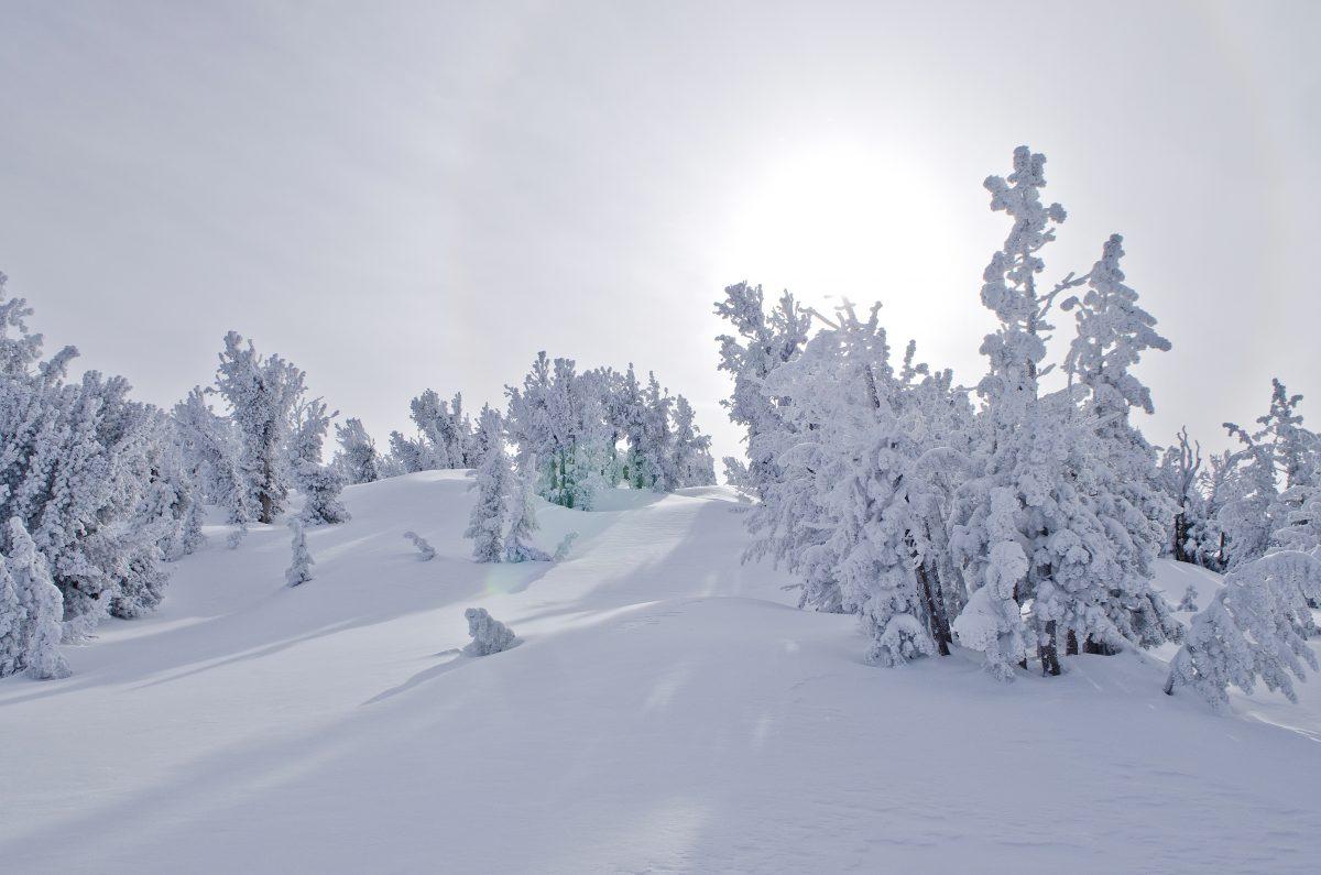 Lake Tahoe Winter Wonderland