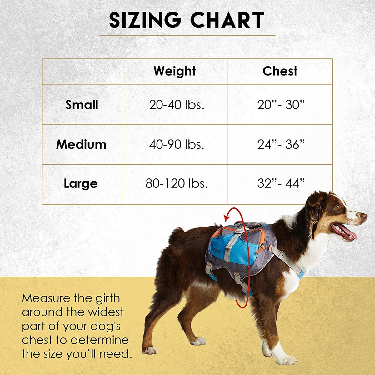 A sizing chart for the Cesar Millan dog backpack with small, medium, large sizes and their corresponding specifications as to weight and chest measurement, with a medium sized dog in front of the chart wearing the blue dog backpack