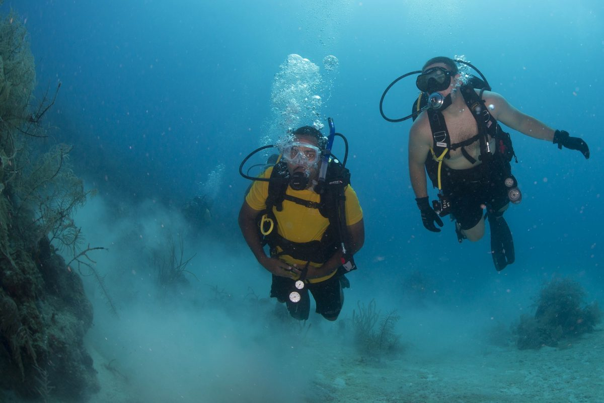 Scuba Divers Exploring The Sea in Placencia, Belize