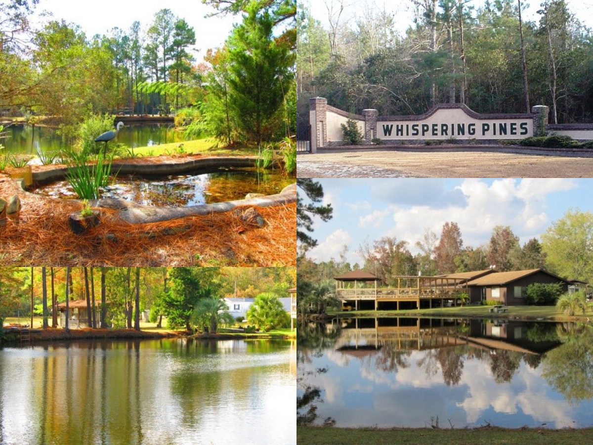 A photo collage of the environment in Whispering Pines Nudist Resort, North Carolina