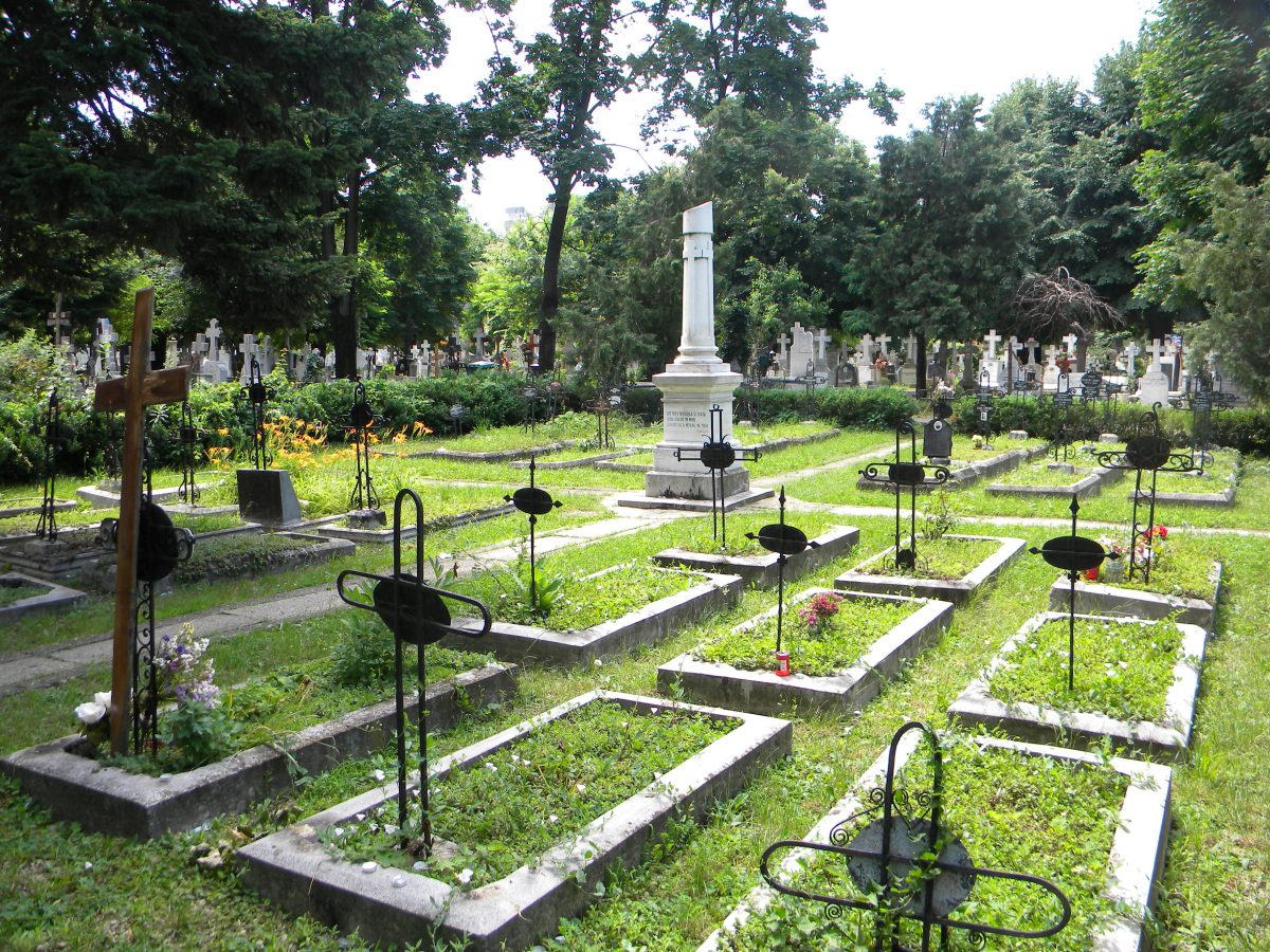 photo of the Notable graves in Bellu Cemetery
