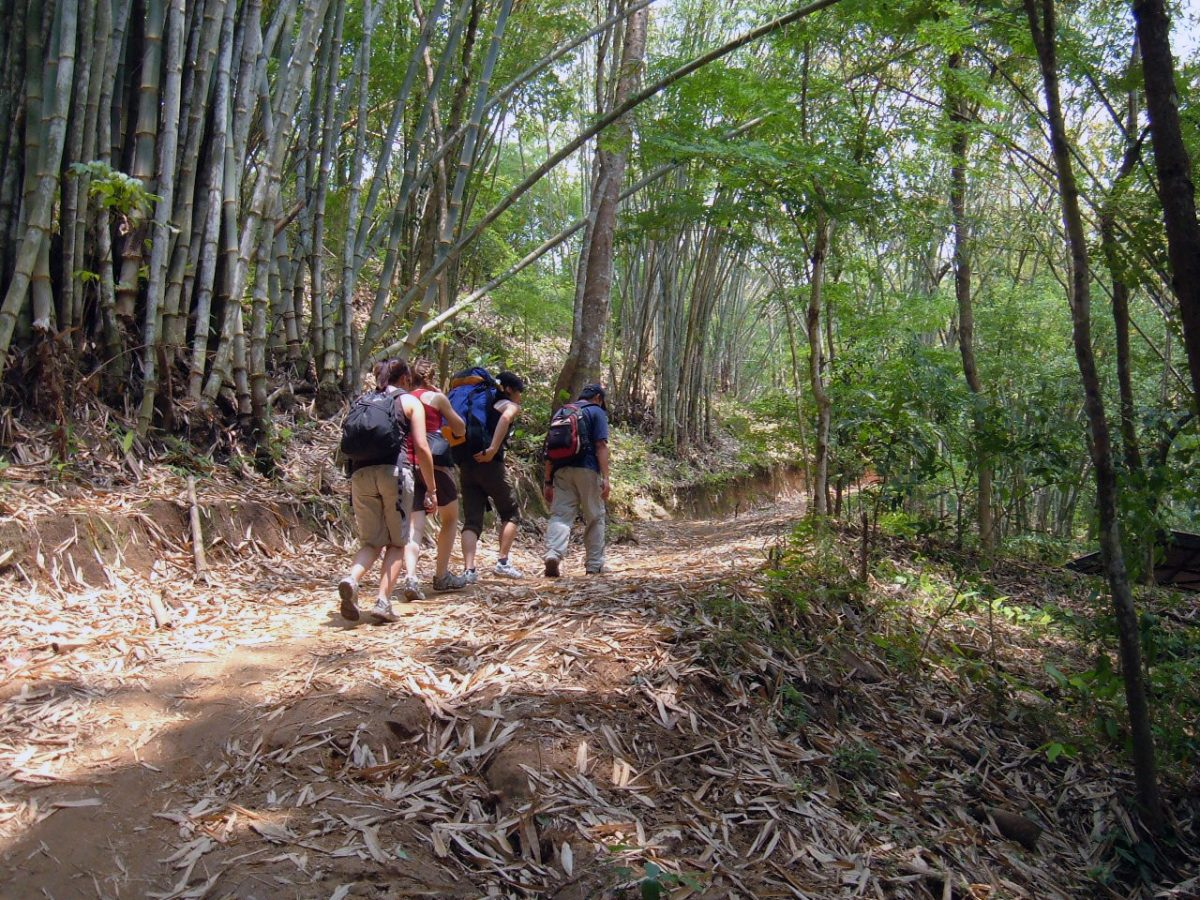 four people hiking the Lanna Trek trail