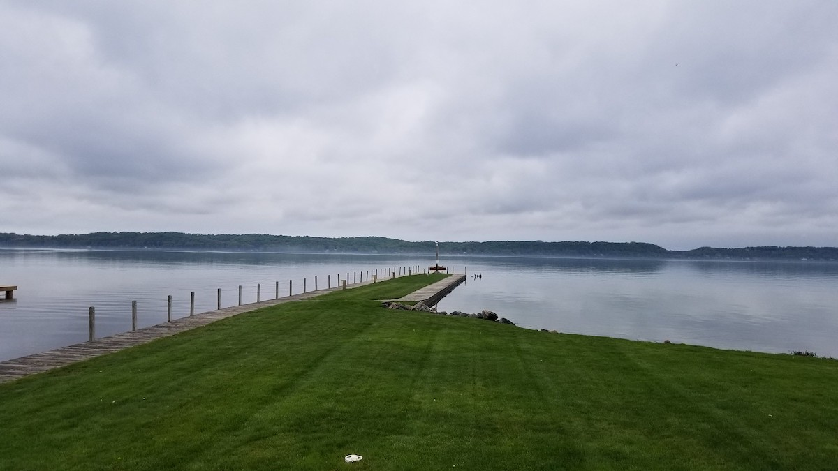 photo of the Lush dockside of Torch Lake on a very cloudy day