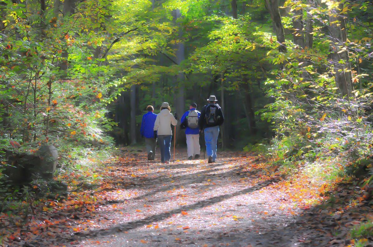People hiking on Smoky Mountains