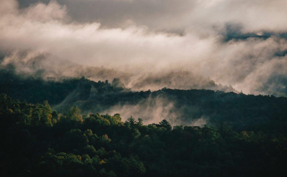 Fog surrounding the Smoky mountain