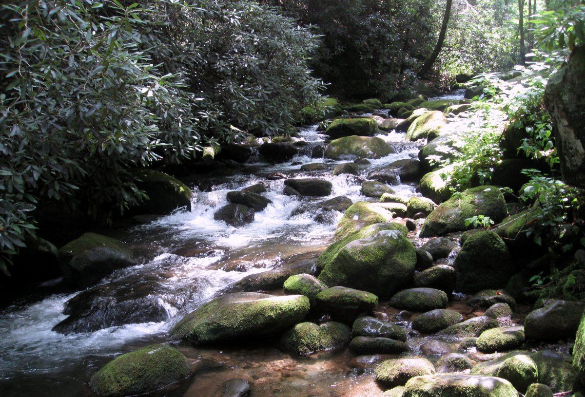Waterfalls at the Roaring Fork Motor Trail