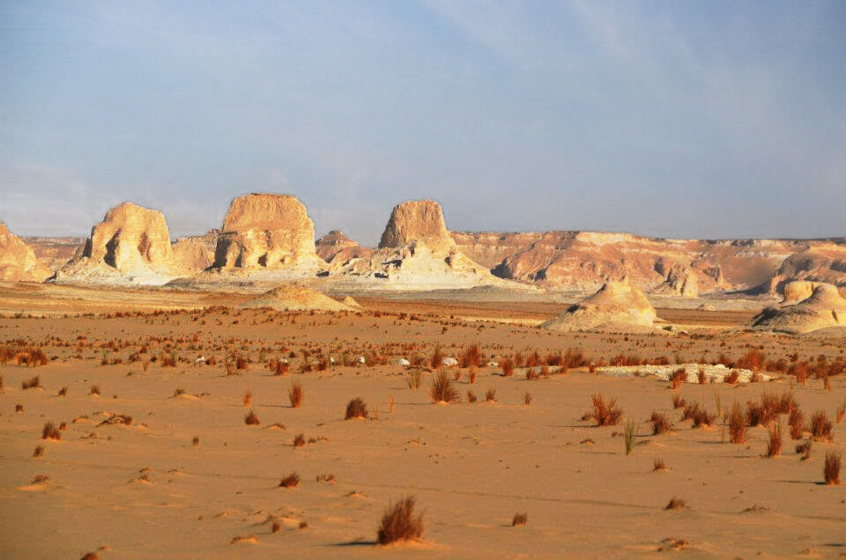 The snow-white to cream rock types of the Western Desert