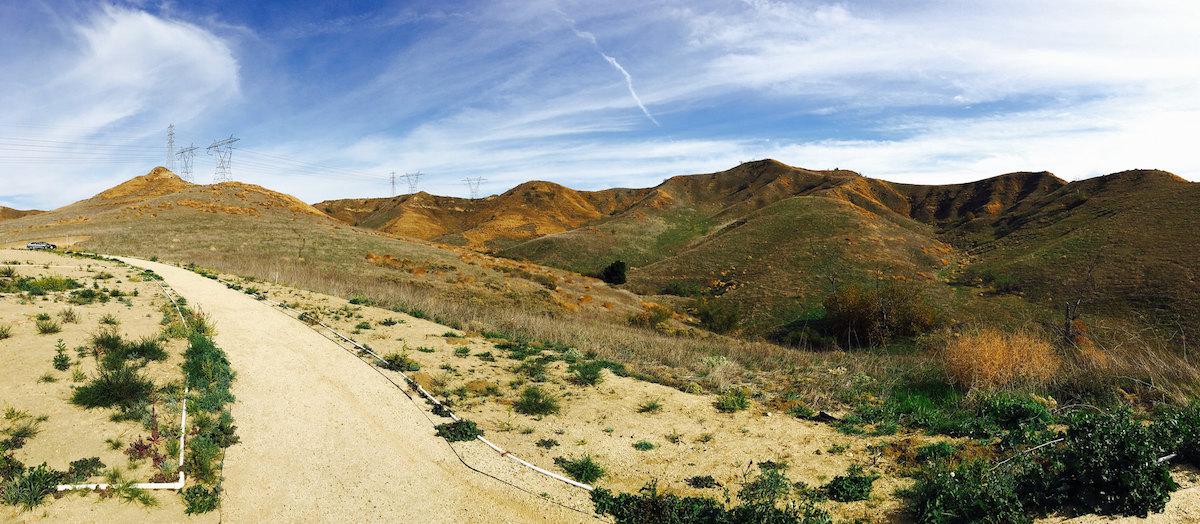 Landscape shot of Chino Hills State Park