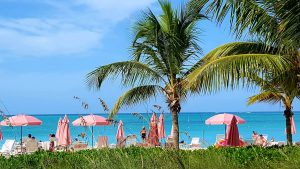 Palm-fringed beach of Provinciales, Turks and Caicos