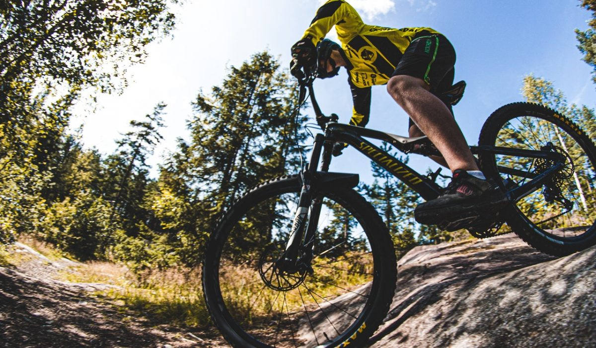GT i Drive Mountain Bike